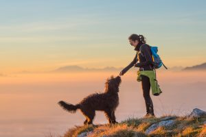 woman feeding her dog after they hiked to the summit